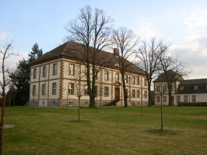 Dessau-Wörlitz Cultural Foundation: Metal and Glass Showcases